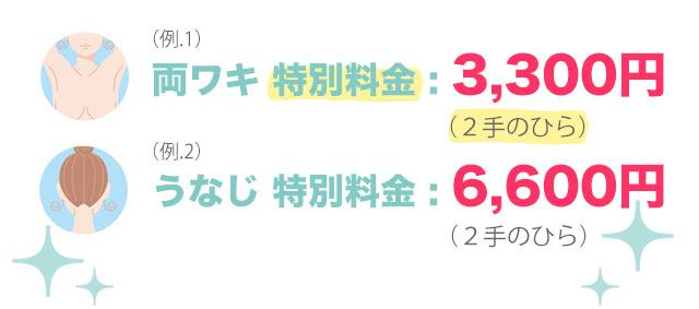 両ワキ 特別料金:3,300円|うなじ 特別料金:6,600円