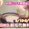 【2月13日~2月28日に期間延長♪】上野院 平日終日限定。剃毛料無料キャンペーン